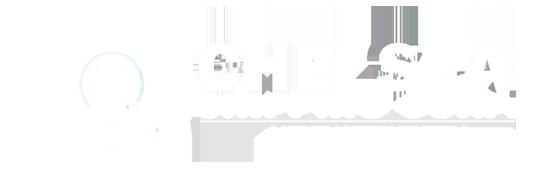 chelsea logistics chelsea shipping logo 2