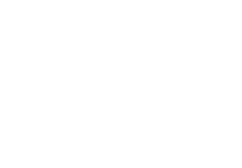chelsea logistics starlite ferries logo
